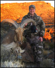 hunting elk at Nilgai